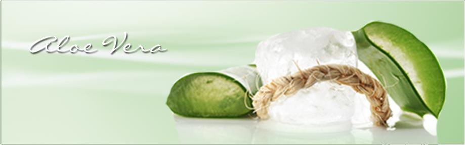 Santé Nature avec l'Aloe Véra Logo